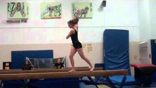 UW-Oshkosh Gymnastics: I am a Champion