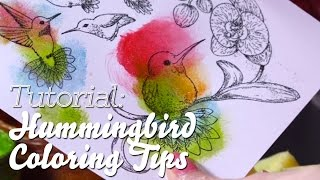 How to Use Stamp Paint for EZ Coloring and Shimmer on Hummingbirds and Orchids - Heartfelt Creations