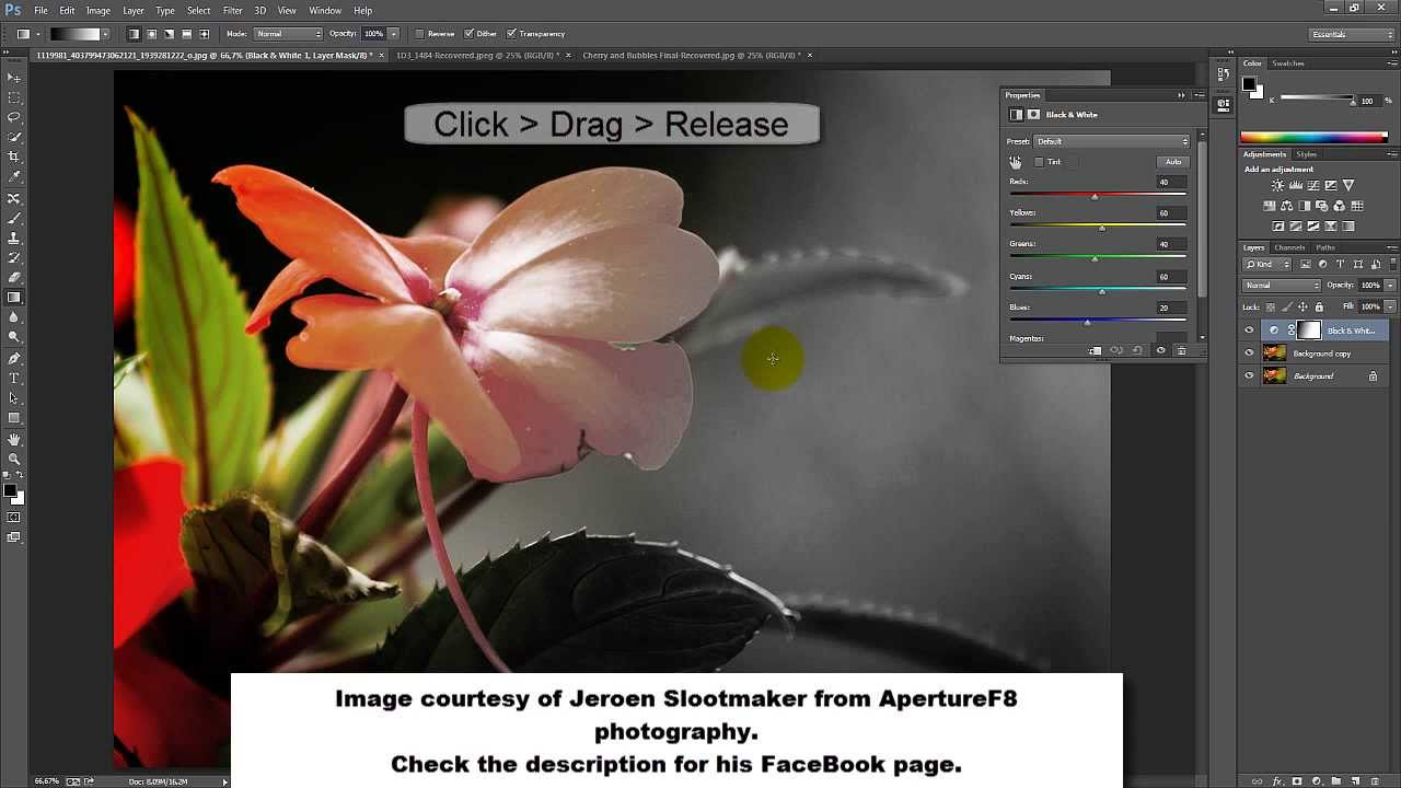 Fade image to color in photoshop — photo 2