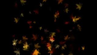 Autumn Leaves Projection - 1 hour loop