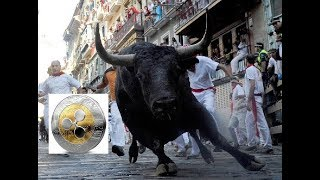 Ripple XRP: The Bulls Are Loose and They Are Running WILD !!!!