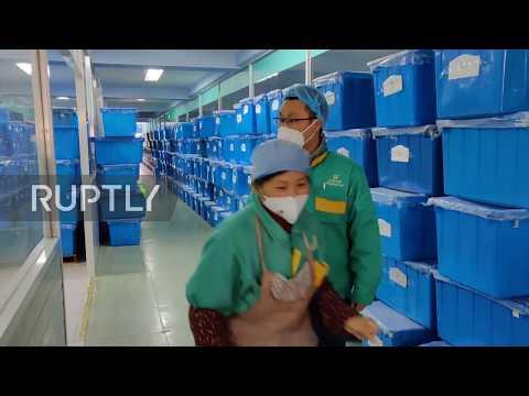 China: Shanghai mask factory ramps up production as demand skyrockets due to coronavirus