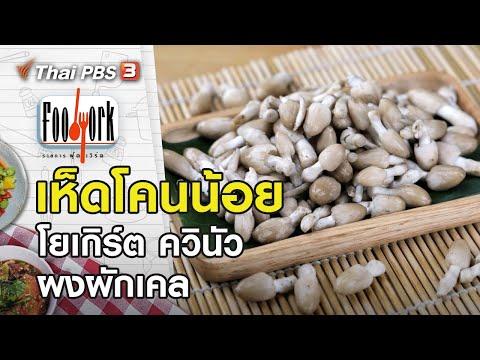 เห็ดโคนน้อย โยเกิร์ต ควินัว ผงผักเคล : Foodwork [CC]