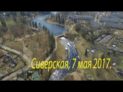 Сиверский, 7 мая 2017.