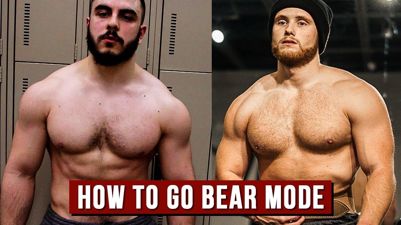 Muscle bear hot
