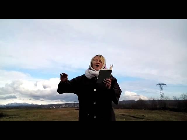 Изображение предпросмотра прочтения – ИринаРоманова читает произведение «Облака» В.Я.Брюсова