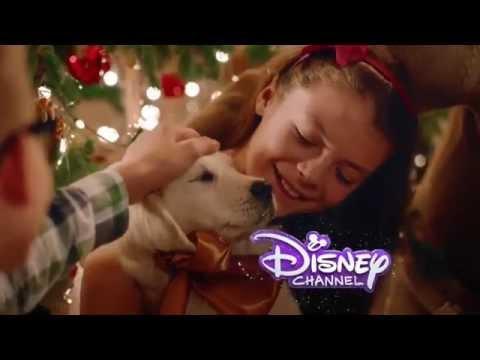 Disney Channel HD Spain - Christmas Idents & Advert 2014 [King Of TV Sat]