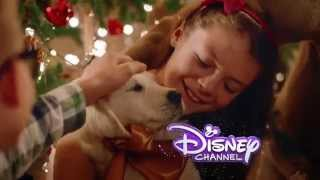 Disney Channel HD Spain - Christmas Idents & Advert 2014 [King Of TV Sat]