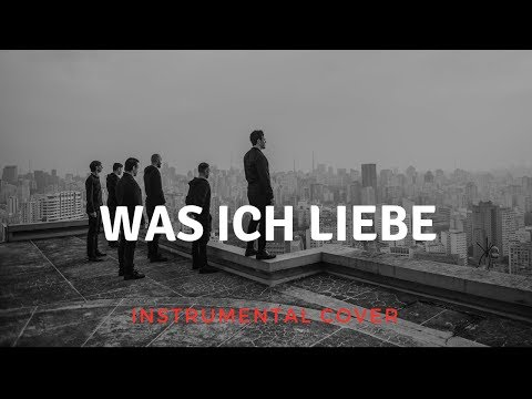 Rammstein - Was Ich Liebe Instrumental Cover (Live Version)
