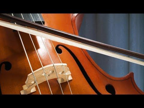 Bach Música Clásica Relajante Instrumental para Estudiar y Concentrarse, Trabajar, Relajarse, Leer