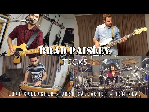 Brad Paisley - Ticks - Cover by Luke & Josh Gallagher, Tom Neal