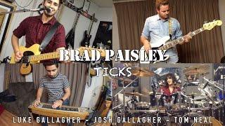 Brad Paisley - Ticks - Cover by Luke & Josh Gallagher, Tom Neal