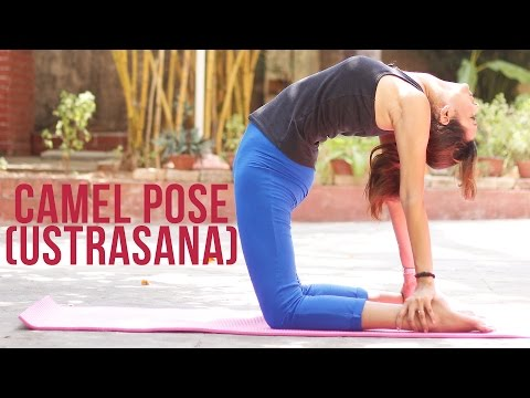 How to do Camel Pose Ustrasana BackBend Asanas