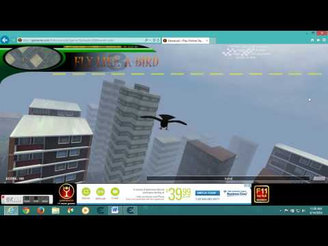 fly like a bird 3 city 1