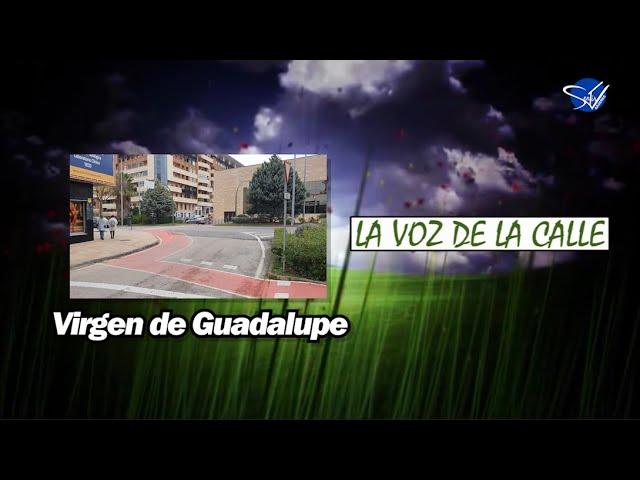 La Voz de la Calle - Virgen de Guadalupe