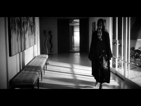 ZAYN - Rainberry (Official Music Video)