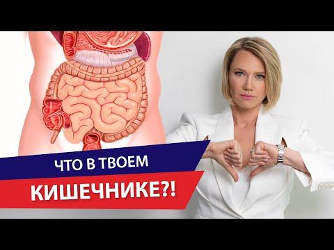 Кишечник - фундамент здоровья. Кишечник человека и связь с болезнями.