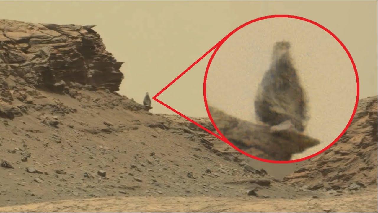 Download El Rover de la NASA acaba de Fotografiar Algo ESPECTACULAR en Marte¡