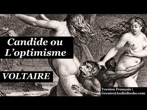 a report on candide by voltaire Candide, ou l'optimisme is a french satire first published in 1759 by voltaire, a philosopher of the age of enlightenment the novella has been widely translated, with english versions titled candide: or, all for the best (1759) candide: or, the optimist (1762) and candide: optimism (1947) it begins with a young man,.