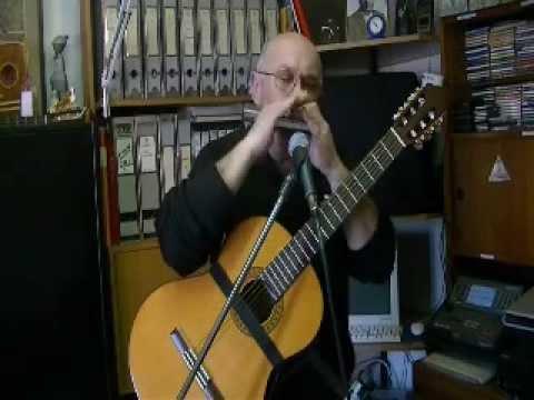 Il Maestro Giulio Molinari esegue musica di intrattenimento anni '60 con chitarra ed armonica