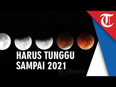 Gerhana Bulan Rabu Dini Hari, Kalau Terlewatkan Harus Tunggu Sampai Tahun 2021