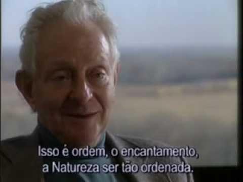 LEON LEDERMAN, CIENTISTA EXPERIMENTAL - O BELO E A CONSOLAÇÃO