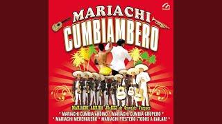 Mariachi Fiestero ¡todos a Bailar!: Piquito de Pollo / Cachete, Pechito y Ombligo / A Mover la...