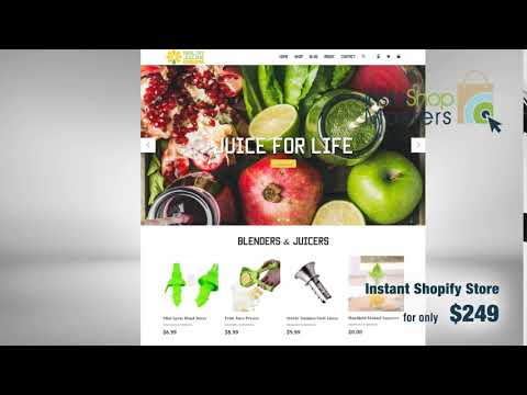 Instant Shopify Store – eCommerce Business Website for Sale