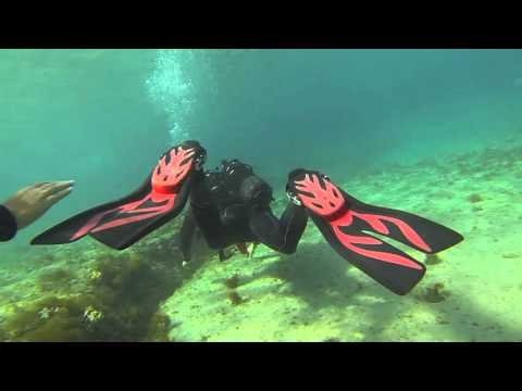 Cyprus beach diving