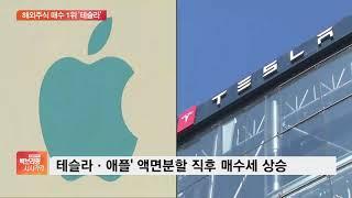 올해 서학개미 PICK 탑 5는?…해외주식 매수 1위 테슬라