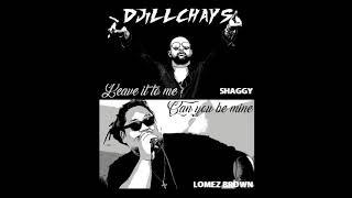 DJiLLCHAYS - LOMEZ BROWN x SHAGGY