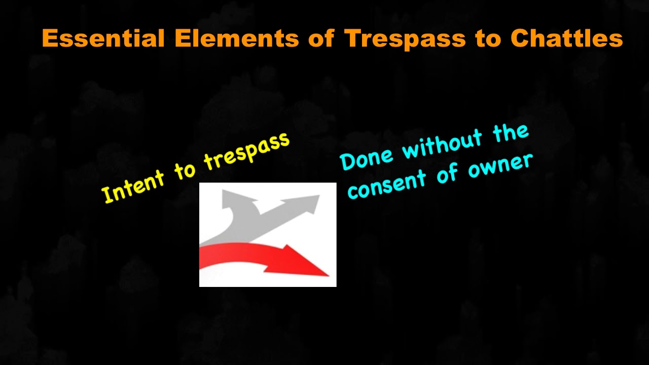 Meaning of Trespass to Chattels (in Tort Law)
