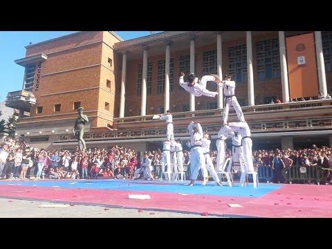 Taekwondo de Kukkiwon, exhibicion en Montevideo 2014