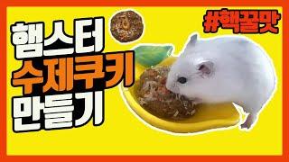 햄스터 간식, 수제쿠키 만들기 / 핵꿀맛 햄스터 영양간…