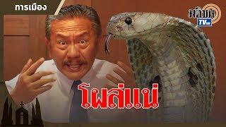 เลือกตั้ง 62 ชูวิทย์ ทำนาย งานนี้ งูเห่าโผล่แน่! : Matichon TV