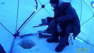 В поисках рыбы Левый берег
