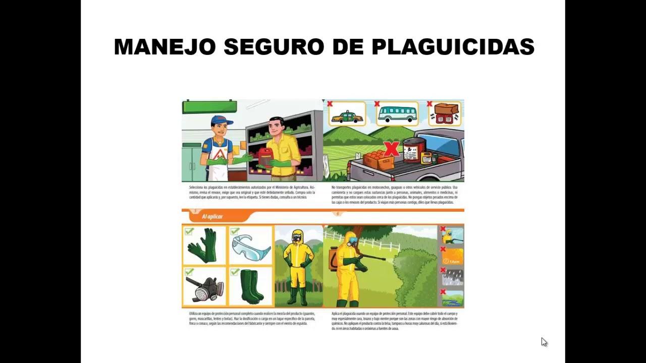 Módulo 1.7: Principios y criterios de la RSPO Ecosistemas y medio ambiente