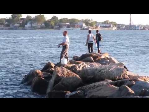 Orchard Beach sunset and weakfish green fin fish in Pelham Bay Park, Bronx, New York City