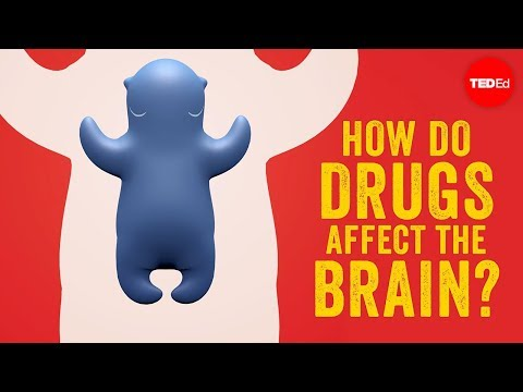 Video image: How do drugs affect the brain? - Sara Garofalo