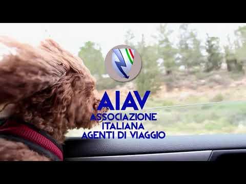 """AIAV - Sosteniamo """"4 zampe in TV – Video Adozioni"""""""
