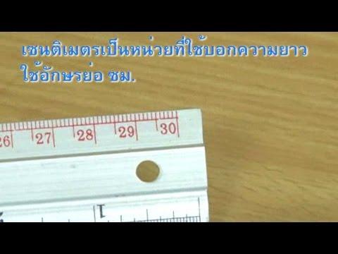 เครื่องมือวัดความยาว คณิตศาสตร์ ป.2
