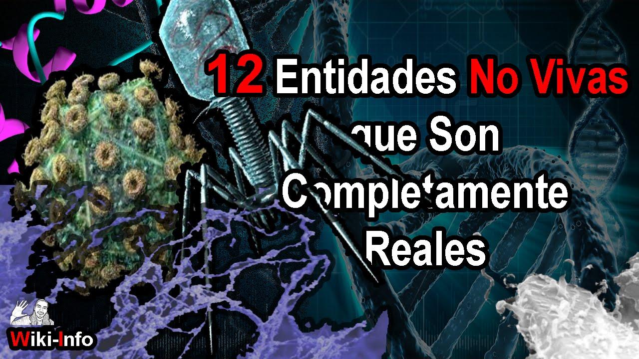 12 Entidades No Vivas Reales | Ep. 1