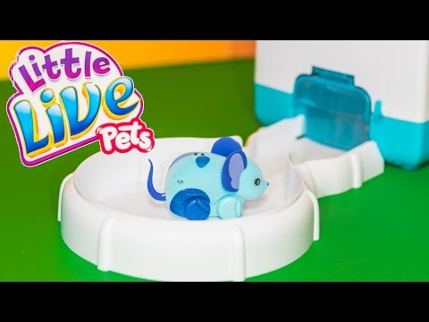 Unboxing the Lil Mouse House a Little Live Pets Toy