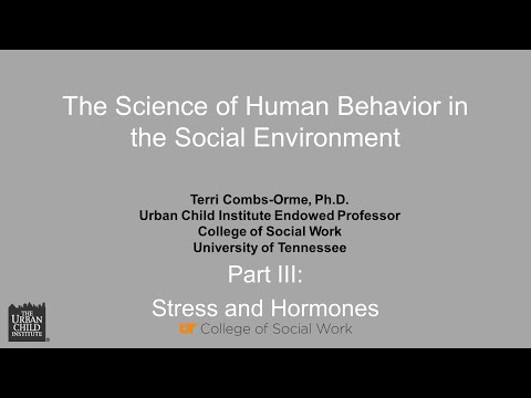 The Science of Human Behavior in the Social Environment: Stress and Hormones Part 3