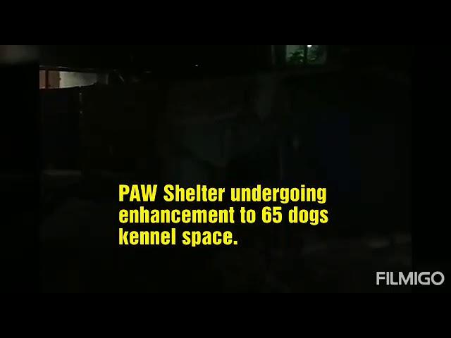 PAWS Shelter Development Tour, 16 November 2019