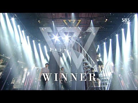 don flirt winner dance with the star