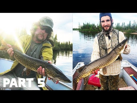 NOT PIKE FISHING, IT'S PIKE CATCHING | Three Rivers Lodge (part 5)