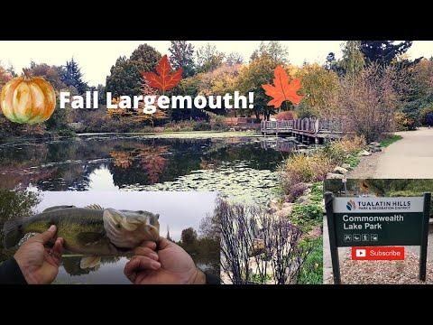 COMMONWEALTH LAKE FISHING!