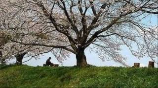Watch music video: Rufus Wainwright - Peach Trees