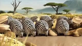 мультфильм про животных ДЛЯ ДЕТЕЙ И ВЗРОСЛЫХ
